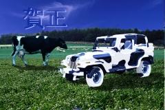 1997 前年に購入したjeep Wranglerにphotoshop上で着色しました。 何人かは本当にこんな柄の車に乗っていると勘違いされたようでした。