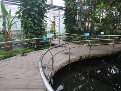 温室事例「咲くやこの花館」
